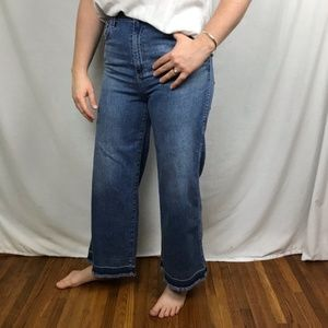 ADRIANO GOLDSCHMIED high rise wide leg ankle sz 28
